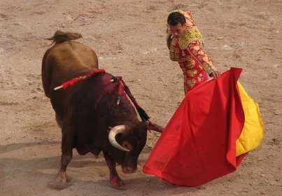 Une scène de corrida avec le torrero et le taureau