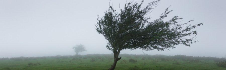 des rafales de vent à Biarritz, France