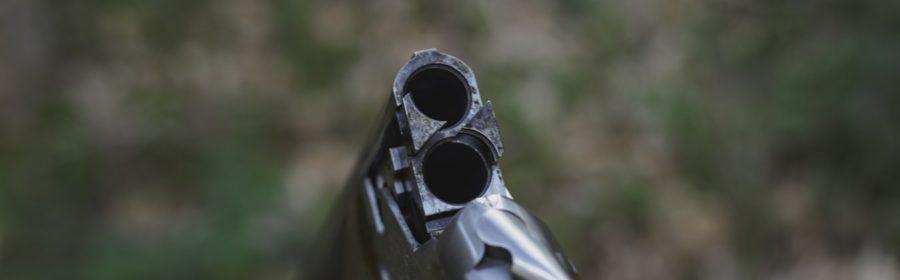 Crosse d'une carabine